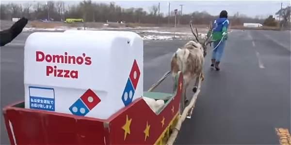 Domino's está ultimando arreglos que aseguren la seguridad en el reparto, y estudia la distancia máxima que los animales podrían recorrer