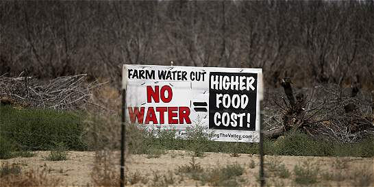 California impone restricciones obligatorias para combatir la sequía