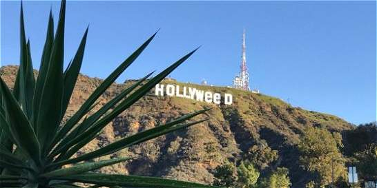 De Hollywood a 'Hollyweed', el cambio para aludir a la marihuana