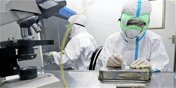 El virus del Ébola ha matado a más de 6.000 personas desde que comenzó el brote epidémico.