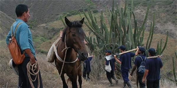 Los defensores del derecho a la tierra a menudo viven en zonas aisladas y alejadas de los actores influyentes.