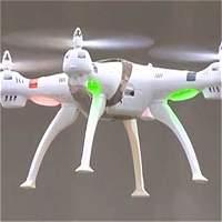 Policía holandesa prueba cazar drones con águilas