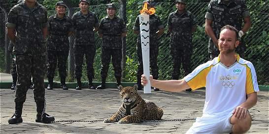 Polémica en Brasil por sacrificio de jaguar, símbolo de la Amazonia