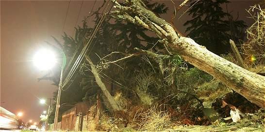 Diez temblores sacuden a cuatro regiones del sur de Chile