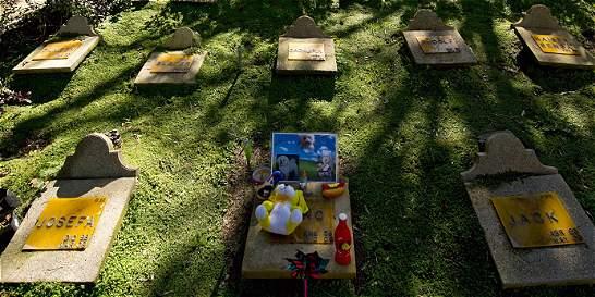 Mascotas podrán ser sepultadas junto a sus dueños en Brasil