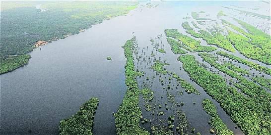 Deforestación de la Amazonía brasileña creció 29% en el último año