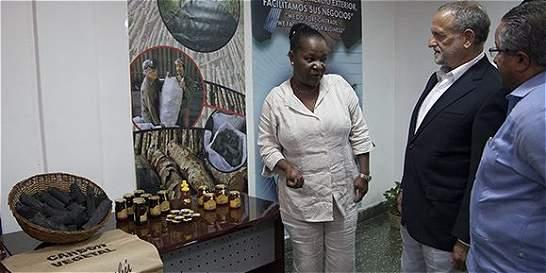 Carbón vegetal, primera exportación de Cuba a EE. UU. en medio siglo