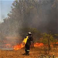 Bachelet dice que Chile vive el peor desastre forestal de su historia