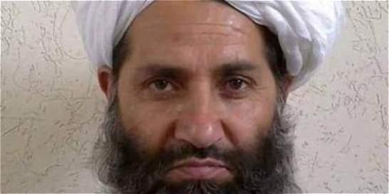 Líder de talibanes deja a un lado la guerra y llama a plantar árboles
