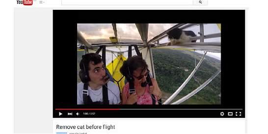 Impactante video de gato que dura dos minutos agarrado de ala de avión