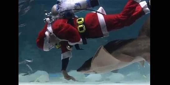 Vea el espectáculo navideño subacuático del acuario en Seúl