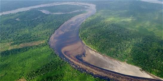 'El de Tumaco es quizá el daño ambiental más grave en la historia'