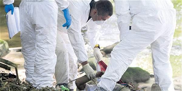 Medellín y Cali, las que más aportan a reducción de homicidios en 2014