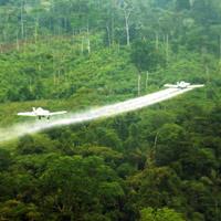 Uso del glifosato terminará en Colombia antes de octubre: Minjusticia