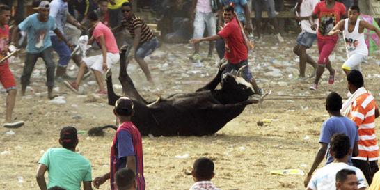 Casos de maltrato animal en corralejas van a tribunal internacional