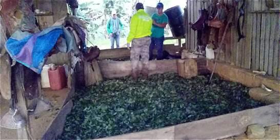 Ejército desmanteló laboratorio de coca en Caquetá