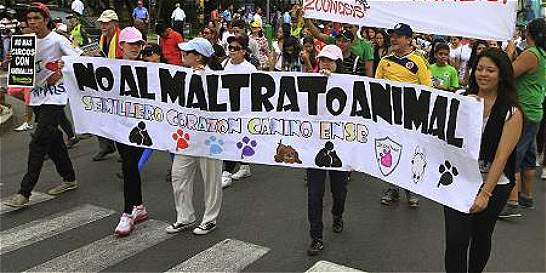 Los vacíos que deja la ley contra maltrato animal a un mes de vigencia