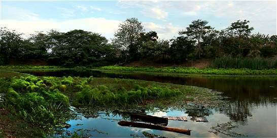 Corporaciones Autónomas Regionales no cumplen con control ambiental
