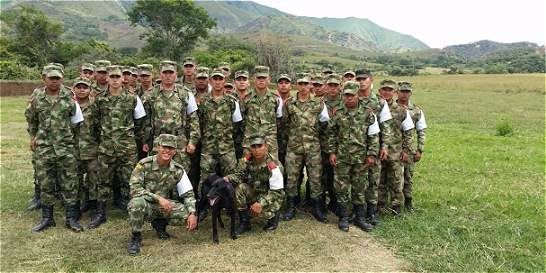 'Milagro', el canino adoptado que entrena con la IX Brigada
