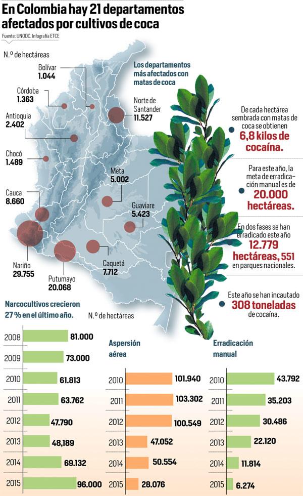 Cifras de cultivos de coca en Colombia