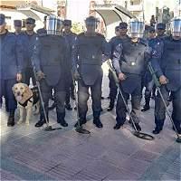 En Chaparral Tolima empezó a operar batallón de Desminado Humanitario