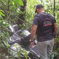 Incautan tonelada y media de marihuana en el Eje Cafetero y Cauca