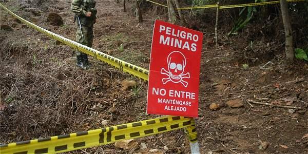 En la estadística de víctimas de minas antipersonal por grupo étnico, el 37 % (139) fueron menores de edad: 44 niñas y 95 niños.