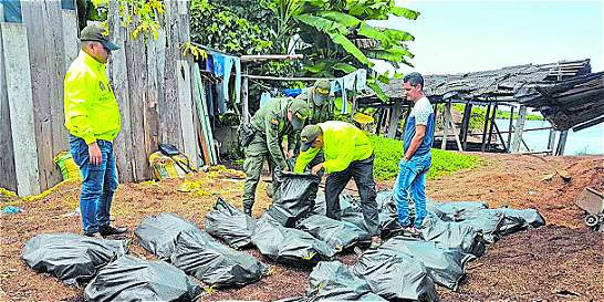 Gran incautación de cocaína a disidencias de las Farc