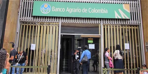 Fiscalía imputa a vicepresidente comercial de Banagrario por crédito a Navelena