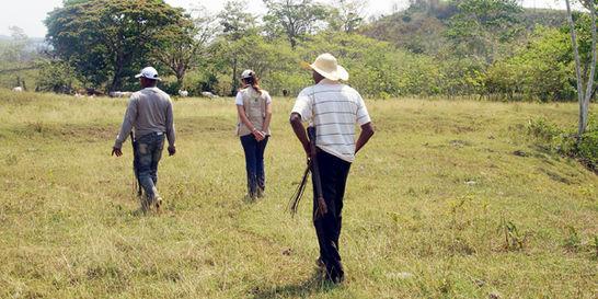 Van restituidas 87.750 hectáreas a las víctimas de la guerrilla