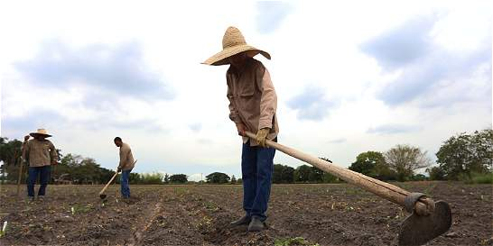 Ahora sí, el agro en Colombia tiene que ser transformado