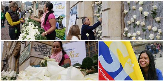 Cientos de flores blancas por la paz en el centro de Bogotá