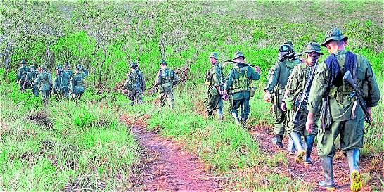 Los cocaleros de Tibú que no han permitido zona para desarme de Farc