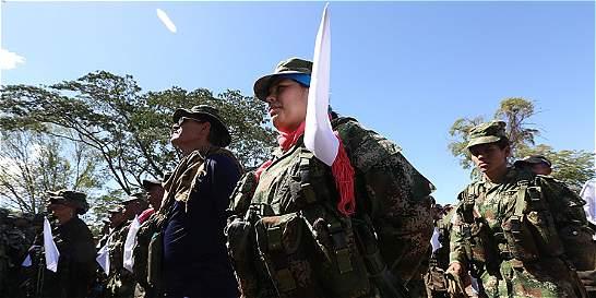 Cerca de 6.900 guerrilleros de las Farc ya están concentrados