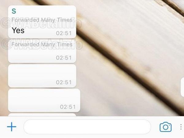 WhatsApp nueva función