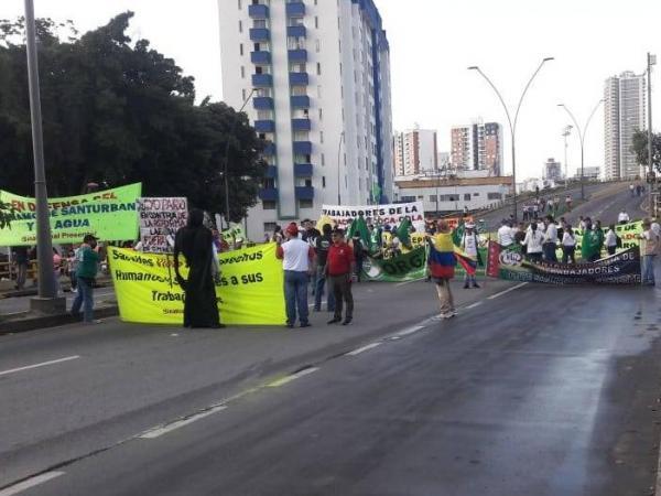Marchas Bucaramanga 4D