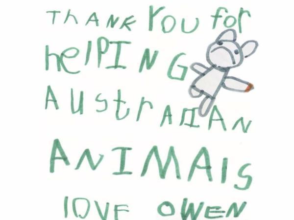 Niño hizo koalas de arcilla y recaudó cien mil dólares para Australia