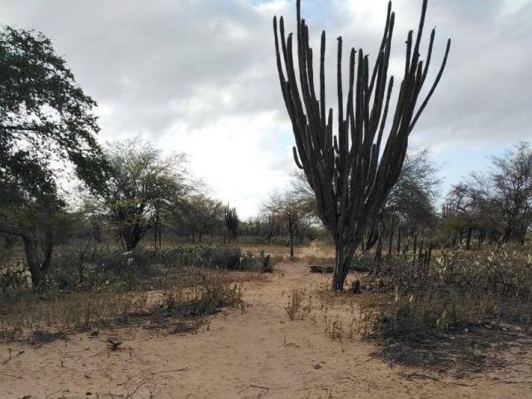 Pozo en La Guajira