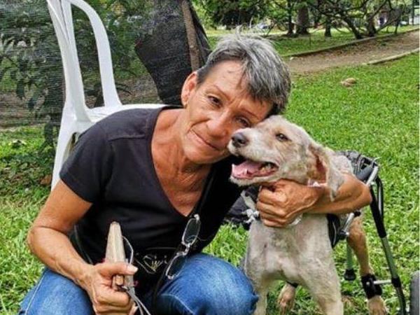Refugio con 130 perros de la calle solicita ayuda para evitar desalojo