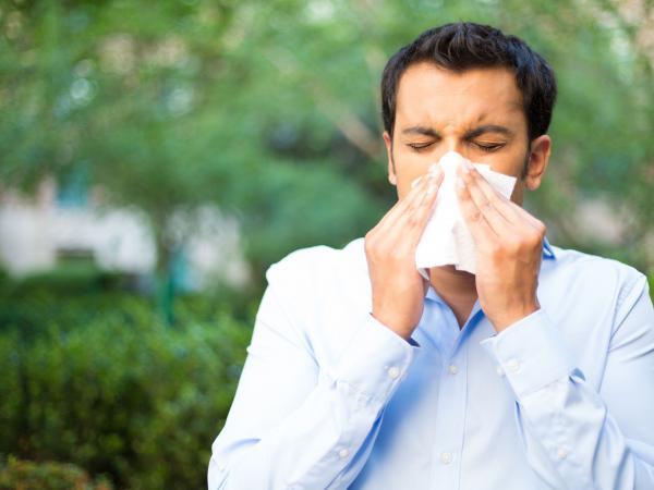 Gripa, estornudo