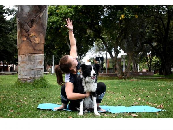 Yoga para perros 2