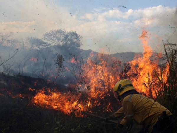 Alertan sobre incendios forestales en Cundinamarca y Bogotá