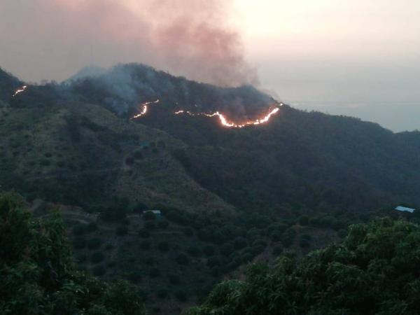 En el departamento del Magdalena se mantiene la alerta roja por incendios forestales en al menos 16 municipios y en la ciudad de Santa Marta.