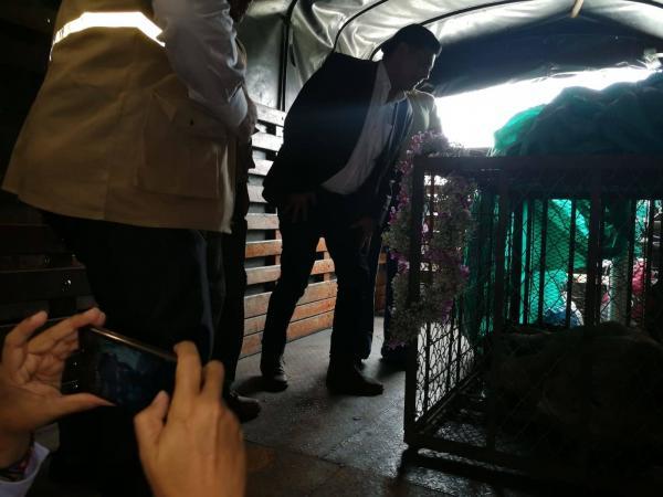 El alcalde de Cali, Jorge Iván Ospina, recibiendo a Júpiter.