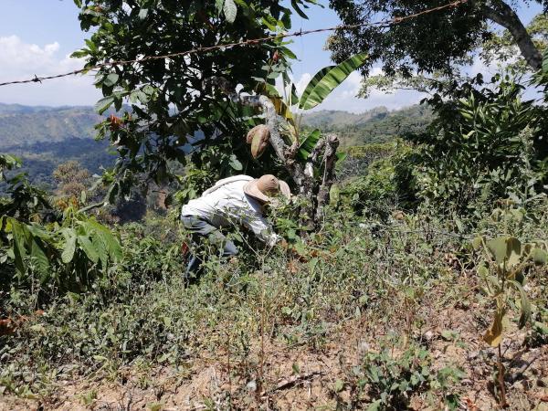 Restitución de tierras en Antioquia