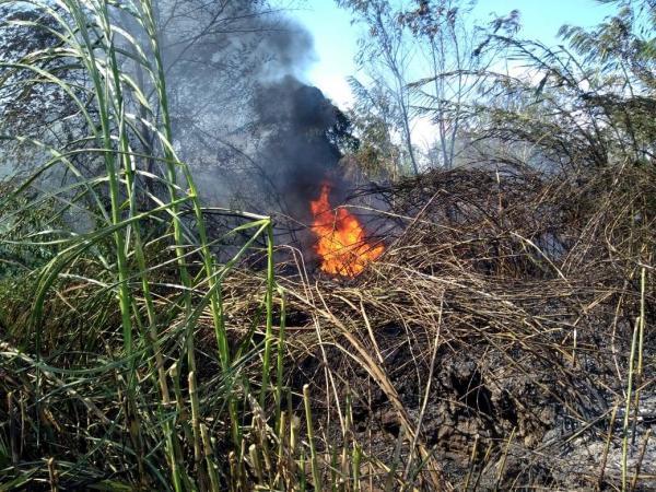 Incendios forestales en Cúcuta