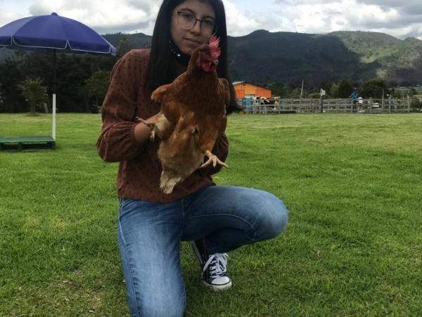 Niña gallina