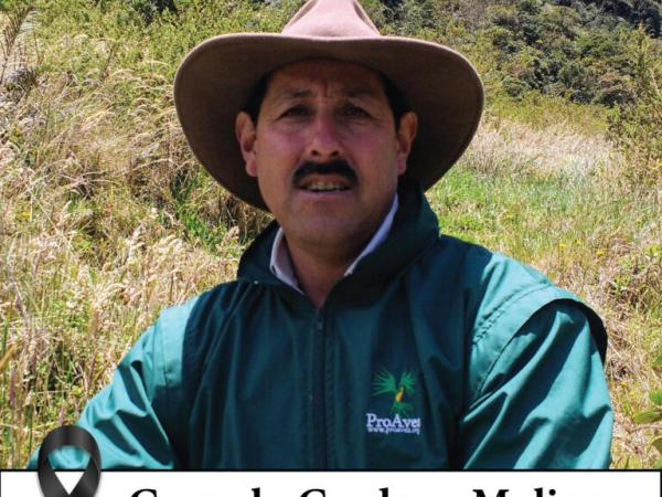 Gonzalo Cardona