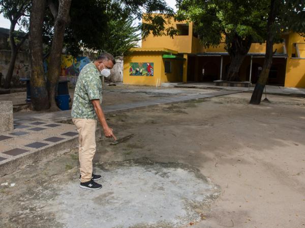 Papillon en Barranquilla