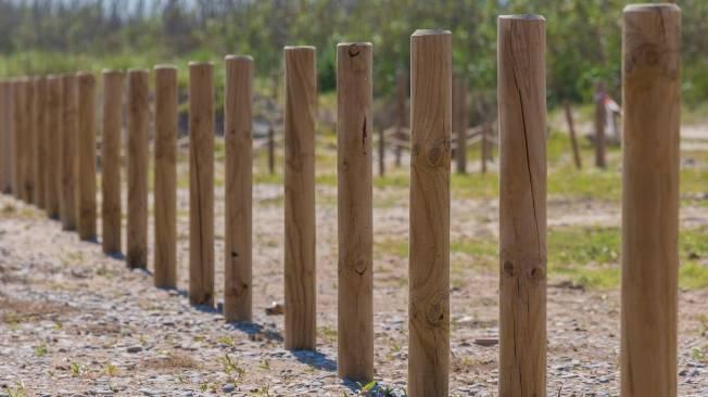 palo de madera